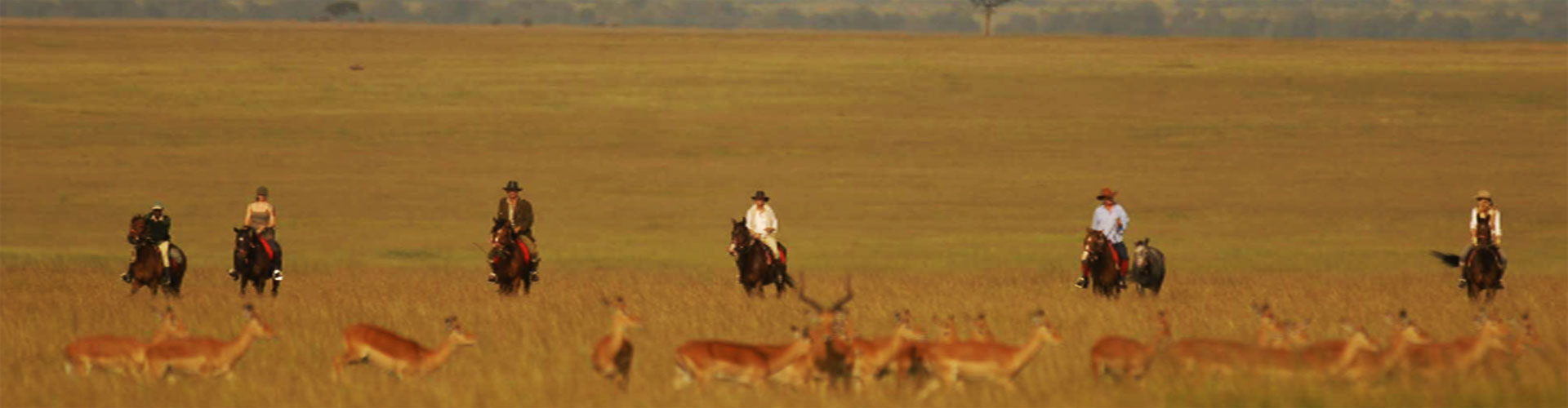 Two of Our Favourite Riding Safaris