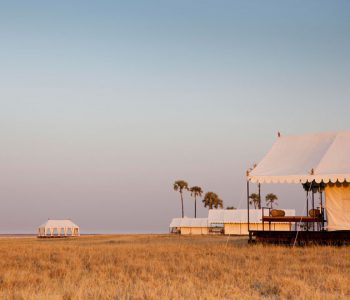 Top 10 Safari Isolation Spots