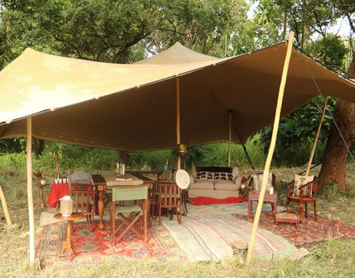 Tafara Springs & Fly Camps gallery
