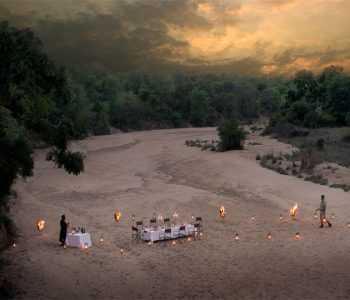 When We Can Travel: Luxury Safari Plans